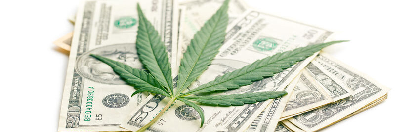 dispensary seo earnings marketing business